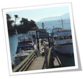 Docks Full Of Pleasure Boats Sucia Island Marine Park