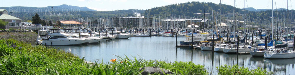 The Squalicum Marina Is Surounded With Boating Related Shops And Seafood Restaurants