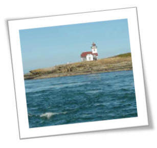 Photo Of The Lonly Patos Light House Stands Guard Over The Shipping Lanes Between The U.S. and Canada