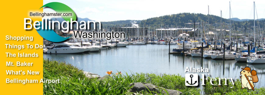 Bellingham Washington Squalicum Harbor