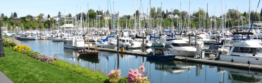 Bellingham Washington's Business Scene Continues To Change And Evolve