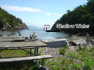 Picnic Tables - Snoring Bay - Sucia Island Washington